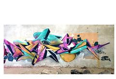 mio (PISPIZNAPE.yo) Tags: urban italy wall graffiti garbage italian industrial wallart spray urbanart verona spraypaint graff spraycan graffitiart sprayart disagio abbandono allaperto degrado urbanwalls urbanstyle graffitistyle areosolart graffwall urbanact graffitiburners graffitiporn graffporn spraydaily sprayzzers