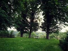 Limbourg (Michiel Thomas) Tags: bench view belgique cit ramparts uitzicht rampart bankje limbourg lige