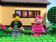 oh man... what was that pill I ate? (woodrowvillage) Tags: house brick cat toy weed lego mini disney pot legos figure marijuana stoner minifigure moc chesire