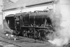 B&W this one (Adrian Walker.) Tags: heritage trains somerset steam tamron locomotives steamtrain 4f minehead manston lms bishopslydeard 7f westsomersetrailway bulleid sdjr 8f stanier 53808 44422 53809 34053 heritagerailways peckett 44871 45379 48624 pacifics canon60d somersetdorsetrailway sirkeithpark brstandard4mt 34070 sdrht blsckfive