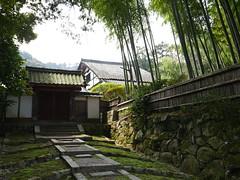 A Quiet Spot at Miidera (Rekishi no Tabi (back, briefly)) Tags: japan bamboo miidera japanesegate   japanesearchitecture   miideratemple japanesebuddhisttemples tendaisectbuddhisttemples
