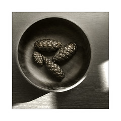 Wooden Bowl (Wilm!) Tags: wood bw zwartwit bowl nb pinecone schaal dennenappel fruitschaal