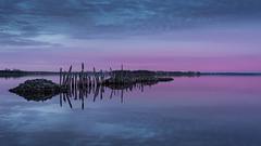 Pink evening (totheforest) Tags: old bridge pink sunset sky seagulls clouds evening pier sweden dusk rosa himmel bro solnedgng moln gammal skymning hamn lule norrbotten kvll karlsvik msar bergnsbron afsdxnikkor1685mmf3556gedvr nikond7200