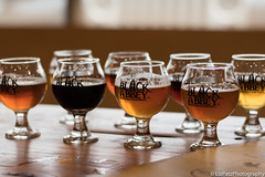 Beer Flight - Black Abbey (LizPatzPhotography) Tags: beer canon polaroid nikon nashville bokeh tennessee sony flight olympus brewery canonrebel brew beerflight canont6i blackabbeybrewingco