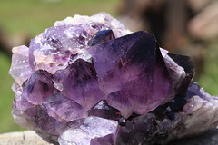 Natural Beauty (Cindy's Here) Tags: ontario canada canon pearl amethyst whatmakesmehappy sc716