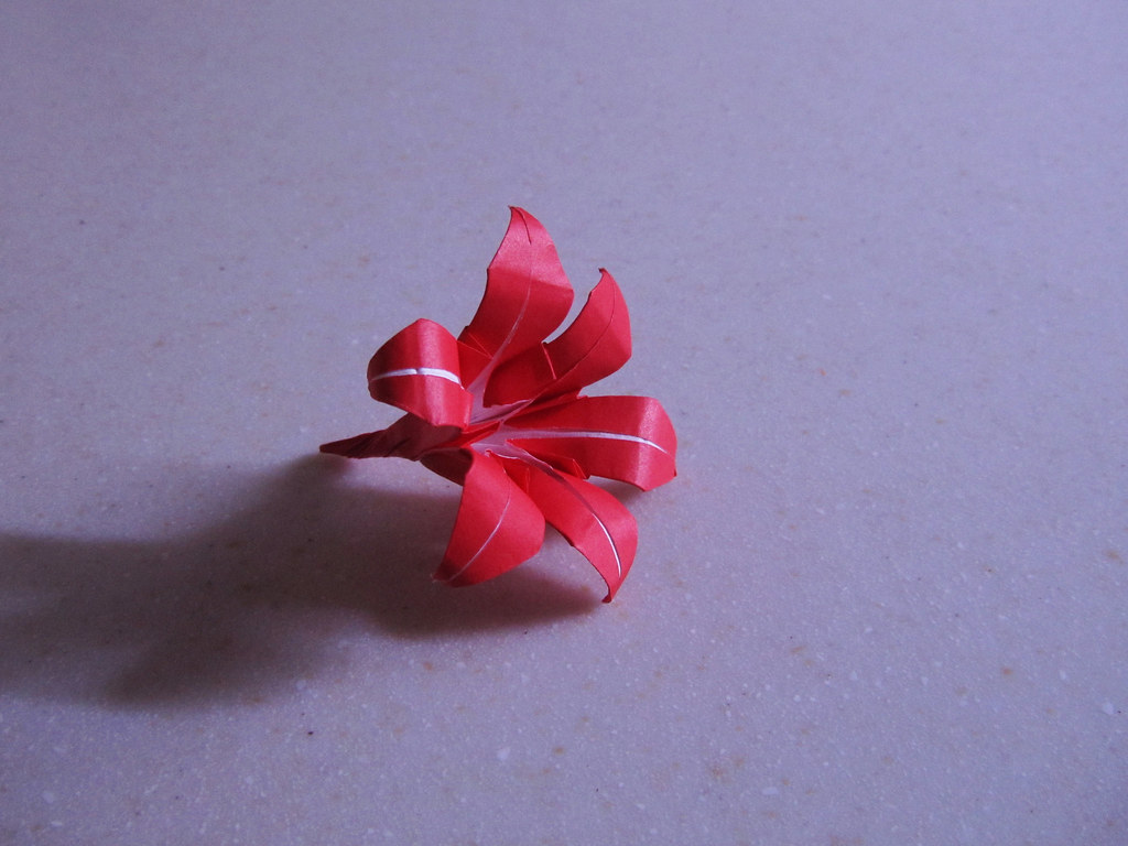The worlds newest photos of lily and origami flickr hive mind then came a little red lily pankori tags izmirmasajfo