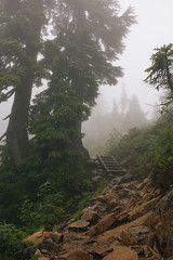 IMG_4055.jpg (Backpacking With Bacon) Tags: washington northerncascades hiking mtpilchuck granitefalls unitedstates us