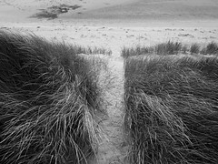 The Dune Path (DrupkaTheUnclear) Tags: scotland bw ullapool footprints sand maramgrass motion lowtide path wideangle lookingdown contrast texture northwest