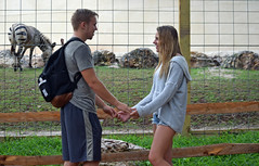 Rainy Zoo Date (MTSOfan) Tags: couple zebra zoo rain wet smile date romantic holdhands