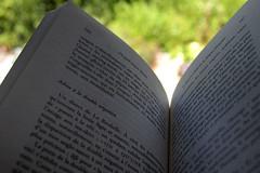 Le rve de 1539  lecture d'Alain Borer,  De quel amour blesse , Fontan, Alpes-Maritimes, aot 2016 (Stphane Bily) Tags: stphanebily fontan alpesmaritimes livre book pages sheets doublengation lecture adieu