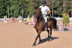 DSC_0906 (2) (ploufjf_64) Tags: paus show jumping chevaux pau 2016