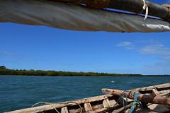 Sailing on a wooden dhow to Kiwla Kisiwani from Kilwa Masoko (1) (Prof. Mortel) Tags: tanzania dhow kilwamasoko kilwakisiwani