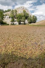 ZOKA Albanie 2015_38_DennisWansink (Dennis Wansink) Tags: zoogdiervereniging vzz zomerkamp veldwerkgroep albanië albania shebenikjabllanica park reservaat fushëstudë librazhd al