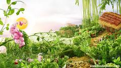 Food landscape - Vietnam Food Stylist (Egret Grass) Tags: foodart foodstyling foodstylist concept peecock onion green