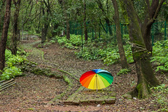 Matheran-5437 (Satish Chelluri) Tags: satishchelluri satishchelluriphotography matheran maharastra umbrella mansoon