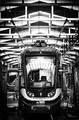"""Krakowiak"" tram at home (d2luk) Tags: poland polska polonia bw blackandwhite tram tramwaj krakowiak krakw cracow cracovia september wrzesie 2016 maopolska maopolskie"