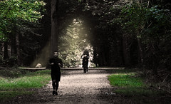 dans un crin de nature - in a natural setting (serial n N6MAA10816) Tags: desaturation nature light lumire arbre tree