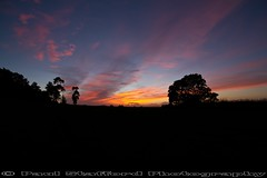 Turn Off (STAFF.PAUL) Tags: outside sunset sun canon canon7d sigma sigma1020 thisphotorocks nationalgeographic nature