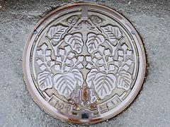 Mishima Fukushima, manhole cover  (MRSY) Tags: mishima fukushima japan manhole plant