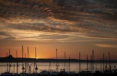 """Zip a dee doo da.. (landsendula) Tags: orange sunrise harbour boats silhouettes autumn nikond300 7002000mmf28 almostsooc castleintheclouds thepromiseofdawn"