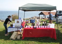 """FW: Run 4 Rescue in Marblehead today. • <a style=""""font-size:0.8em;"""" href=""""http://www.flickr.com/photos/79036902@N02/15620028080/"""" target=""""_blank"""">View on Flickr</a>"""