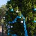 Trees_of_Loop_360_2014_115