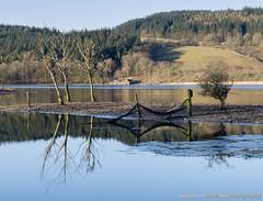 2251 Esthwaitewater (Steve Swis) Tags: uk england reflection water landscape britain lakedistrict cumbria april 2013 esthwaitewater samsungnx5 steveswis