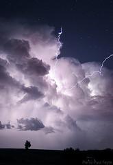 L'orage qui en voulait au ciel (Pierre-Paul Feyte) Tags: storm tree night stars lightning nuit arbre orage toiles gascony gers clairs extranuageux