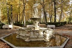 Fuente del jardn (vcastelo) Tags: madrid espaa spain castelo isla fuentes jardn palacio aranjuez vctor gutirrez vcastelo