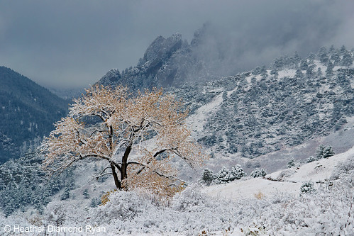 Photo - Heather Diamond Ryan - Winter Collides with Fall - 3rd Place - Scenery