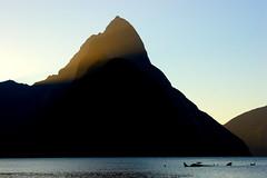 Mitre Peak (Darren Schiller) Tags: ocean sunset newzealand mountain nature worldheritage mitrepeak milfordtrack