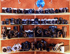 Canon line up. (Hovork, wherefore and why.) Tags: slr canon rangefinder pointandshoot canoneos canonfd ltmmount