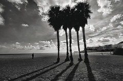 Shadows.- (ancama_99(toni)) Tags: shadow vacation people blackandwhite cloud man blancoynegro palms mar blackwhite nikon mediterranean mediterraneo shadows gente silhouettes sombra palmeras tokina human sanjos vacaciones sombras siluetas nube cabodegata 1000views 2015 10favs 10faves 25favs 25faves njar ltytr2 ltytr1 1116mm d7000