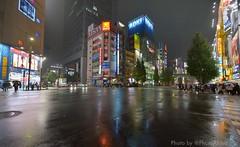 2014111 3 akihabara akiba (PhotoAkiba) Tags: winter rain japan tokyo mainstreet crossing   intersection akihabara nightview akiba   electrictown       2014 1