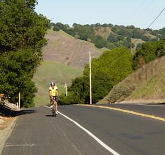 Bear Creek Road (Mama Bear)