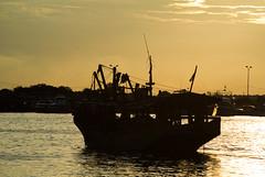 Berlayar (Irwin Day) Tags: siluet muara karang angke