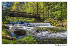 Obere Argen (tom22_allgaeu) Tags: water river germany bayern deutschland bavaria nikon wasser europa europe wasserfall tamron fluss allgu allgaeu d3200 eistobel westallgu schttentobel obereargen