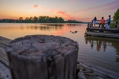 LSU Lakes (Antrell Williams) Tags: trees sunset water campus rouge dock louisiana lakes lsu baton