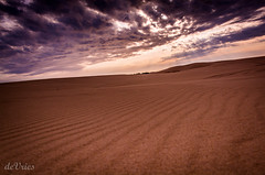 Ever moving, ever changing . . . (Dr. Farnsworth) Tags: light sunshine clouds mi dark moving spring sand shadows wind patterns dunes changing silverlake may2016