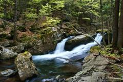 I movimenti del rio Le Pozze (EmozionInUnClick - l'Avventuriero's photos) Tags: panorama cascate torrente valledellepozze