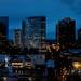 Bellevue, Seattle, WA, at night