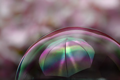 a bubble in the rain...bow (simo m.) Tags: macro reflection umbrella soap rainbow bubbles bubble