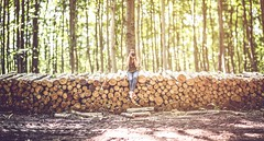 Forest brenizer (hispan.hun) Tags: wood summer portrait green girl sunshine forest canon vintage spring photographer sony longhair 85mm bark redhair lumberjack lumber brenizer canonfd sonyphotography hispanhu hispansphotoblog