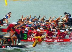 DBS Marina Regatta 2016 #dbsregatta #dbsregatta2016 #marinabay #marinapromontory #dragonboat #Singapore #goodday #ilovephotography #photooftheday #canonsg #canoneos80d #canoneos500d #dbsmarinaregatta (Edmund @ Shoot SGP) Tags: singapore dragonboat ilovephotography photooftheday marinabay goodday canoneos500d canoneos80d canonsg marinapromontory dbsmarinaregatta dbsregatta dbsregatta2016