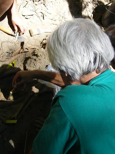 Andrés Crespo-Voluntario