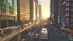 (nacestudio) Tags: road sunset sunshine golden traffic taiwan vehicles busy taipei rushhour