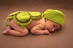 Emilia als Schildkrte (Benjamin-Sehl) Tags: baby turtle newborn schildkrte