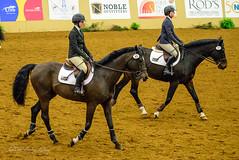 160505_D600_3675.jpg (shirley319) Tags: horse unitedstates lexington kentucky may nationals equestrian 2016 d600 horsecompetition ihsa kentuckyhorsepark