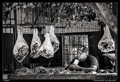 Pensando en grande (meggiecaminos) Tags: bw white black blanco market negro cuba streetphotography bn meat pork mercado butcher mercadomunicipal carne mercato bianco nero maiale pata carnicero macellaio camagey porkleg patadecerdo cosciadimaiale