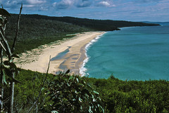 Newton's Beach, Nadgee, 1985 (NettyA) Tags: summer film 35mm australia slide coastal bushwalking nsw scanned newsouthwales kodachrome 1986 1985 scannedslide farsouthcoast nadgee nadgeenaturereserve newtonsbeach